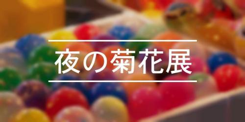 祭の日 夜の菊花展