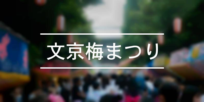 文京梅まつり 2020年 [祭の日]