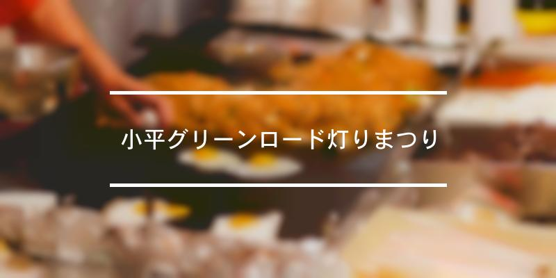 小平グリーンロード灯りまつり 2019年 [祭の日]