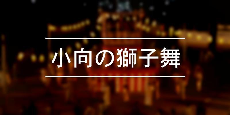 小向の獅子舞 2019年 [祭の日]