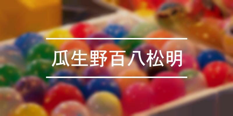 瓜生野百八松明 2019年 [祭の日]