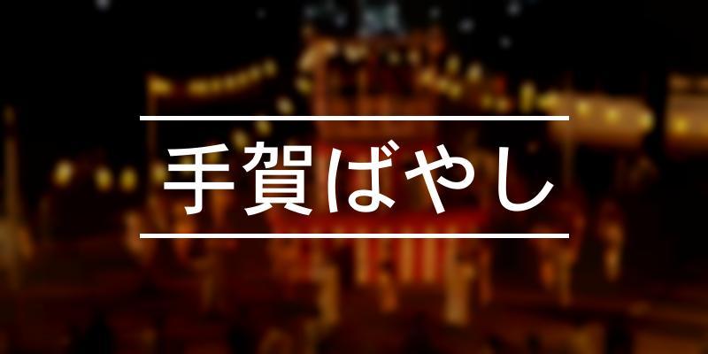 手賀ばやし 2019年 [祭の日]