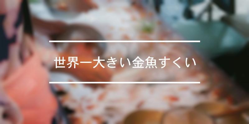 世界一大きい金魚すくい 2020年 [祭の日]