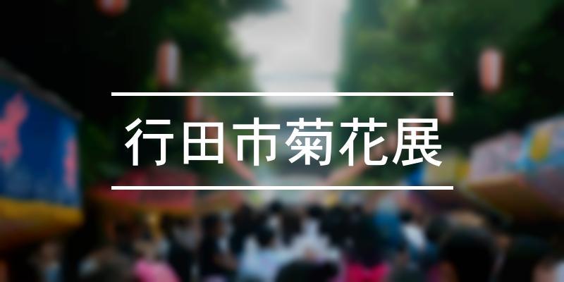 行田市菊花展 2019年 [祭の日]
