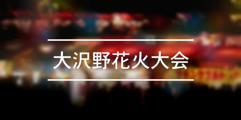 大沢野花火大会 2020年 [祭の日]