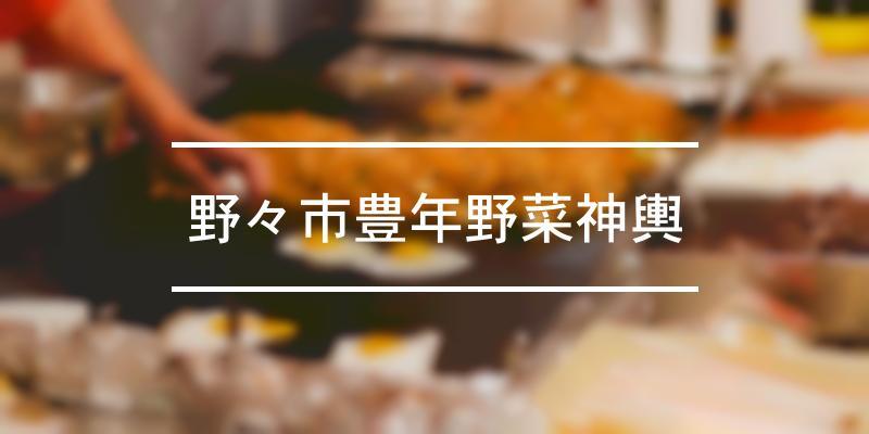 野々市豊年野菜神輿 2019年 [祭の日]