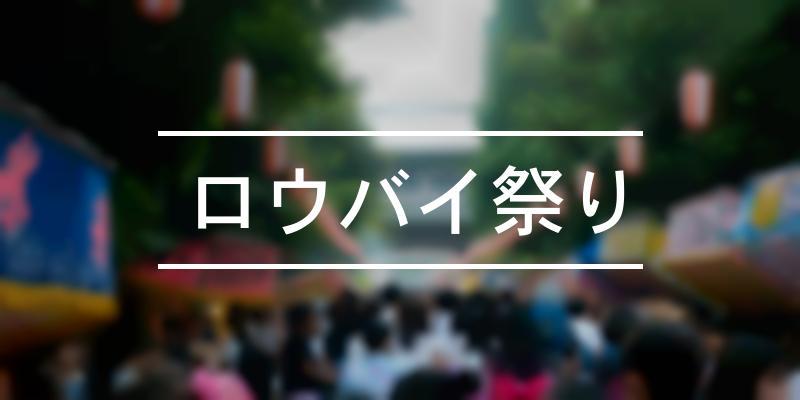 ロウバイ祭り 2019年 [祭の日]