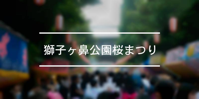 獅子ヶ鼻公園桜まつり 2020年 [祭の日]