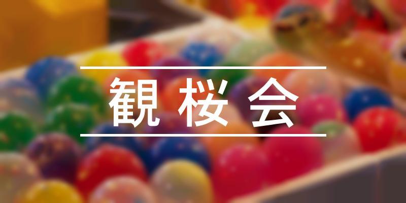 観桜会 2020年 [祭の日]
