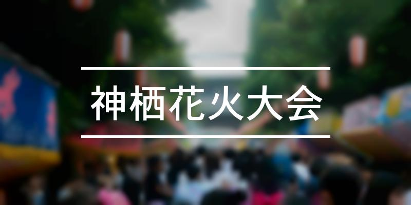 神栖花火大会 2019年 [祭の日]