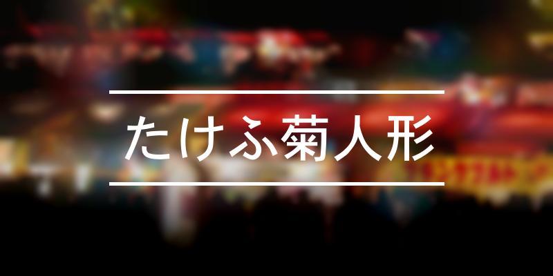 たけふ菊人形 2019年 [祭の日]