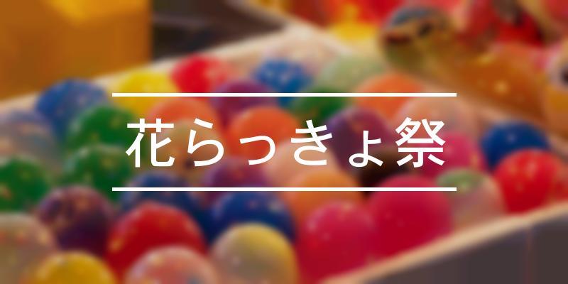 花らっきょ祭 2019年 [祭の日]