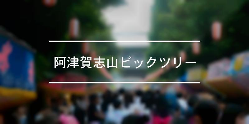 阿津賀志山ビックツリー 2019年 [祭の日]