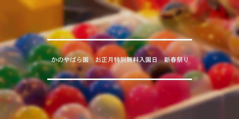 かのやばら園 お正月特別無料入園日 新春祭り 2020年 [祭の日]