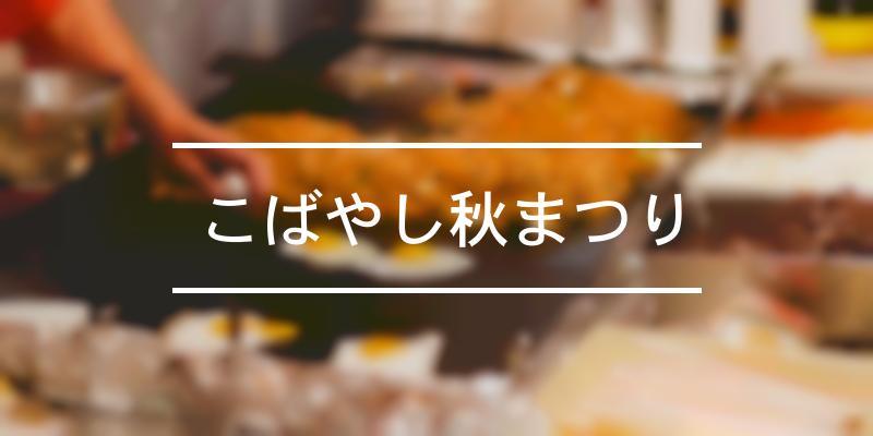 こばやし秋まつり 2019年 [祭の日]