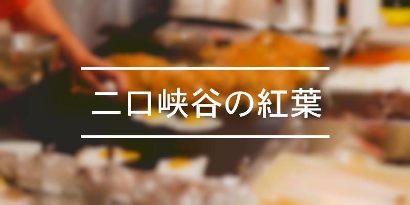 二口峡谷の紅葉 2019年 [祭の日]