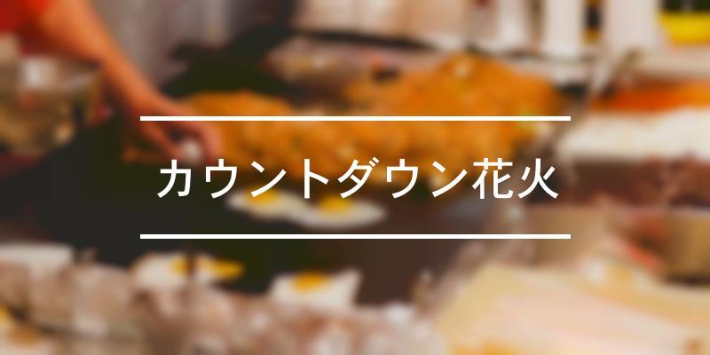 カウントダウン花火 2019年 [祭の日]