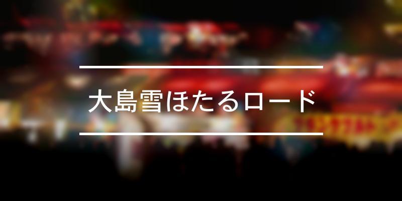 大島雪ほたるロード 2020年 [祭の日]