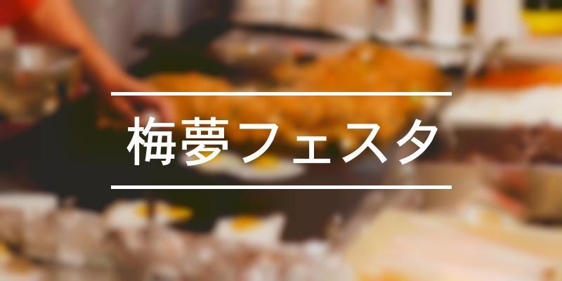 梅夢フェスタ 2020年 [祭の日]