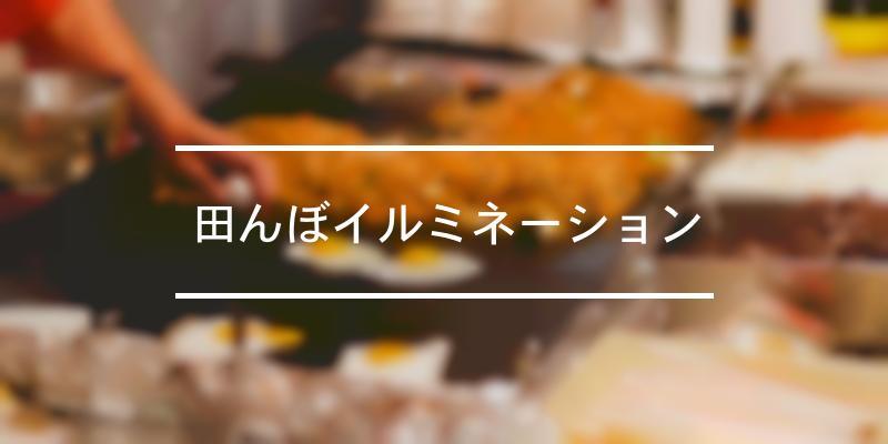 田んぼイルミネーション 2020年 [祭の日]