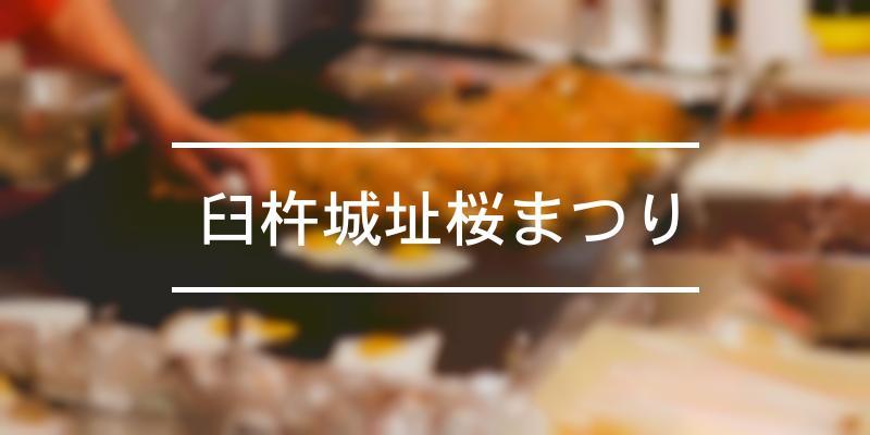 臼杵城址桜まつり 2020年 [祭の日]