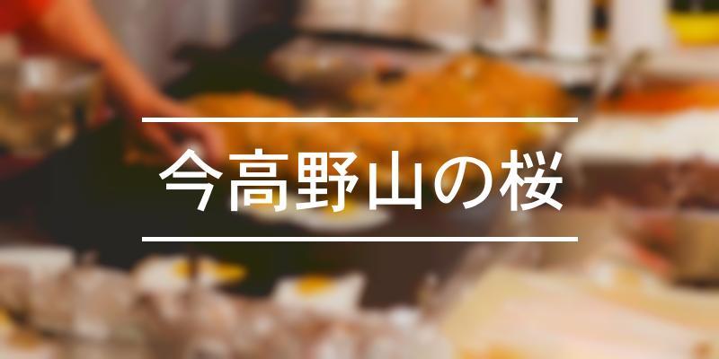 今高野山の桜 2020年 [祭の日]