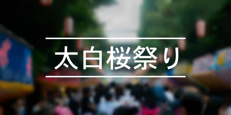 太白桜祭り 2020年 [祭の日]