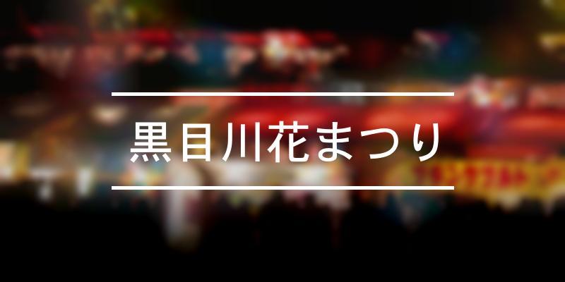 黒目川花まつり 2020年 [祭の日]
