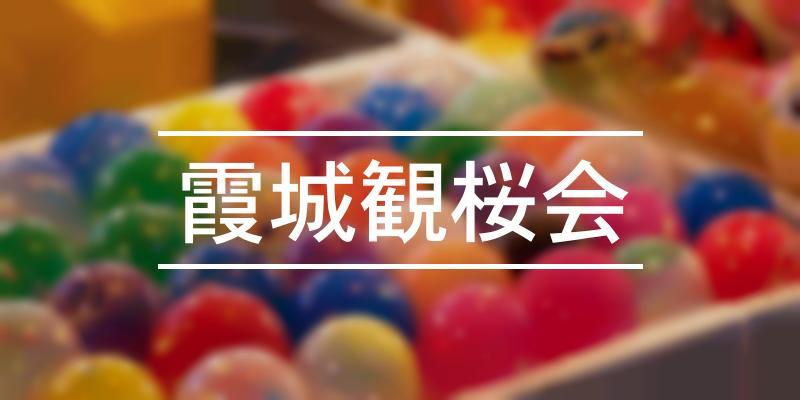 霞城観桜会 2020年 [祭の日]