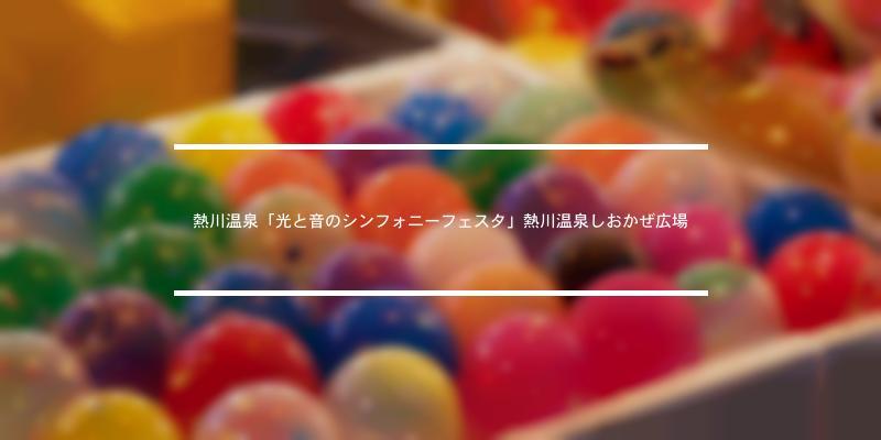 熱川温泉「光と音のシンフォニーフェスタ」熱川温泉しおかぜ広場 2021年 [祭の日]