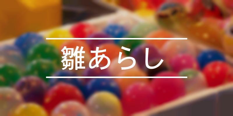 雛あらし  2021年 [祭の日]