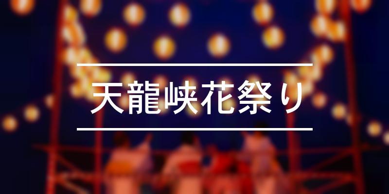 天龍峡花祭り 2021年 [祭の日]