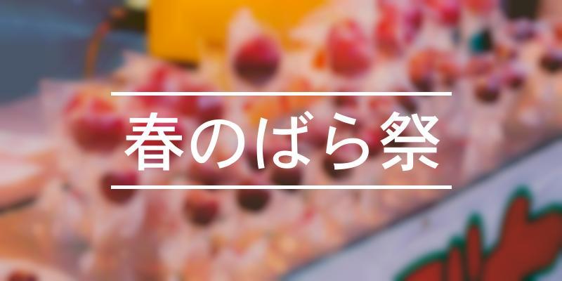 春のばら祭 2021年 [祭の日]