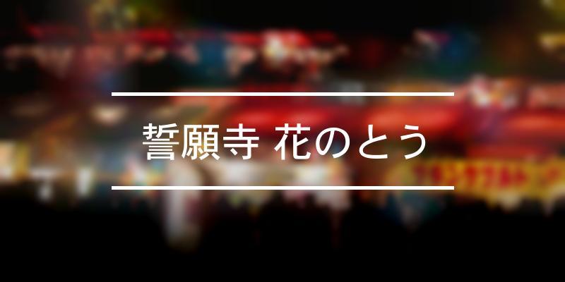 誓願寺 花のとう 2021年 [祭の日]