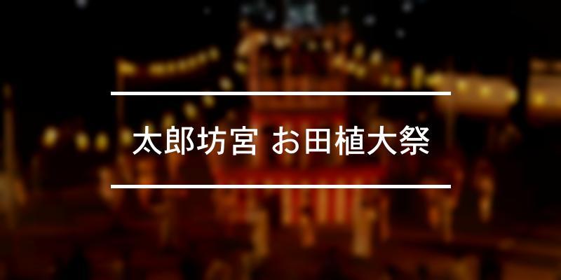 太郎坊宮 お田植大祭 2021年 [祭の日]