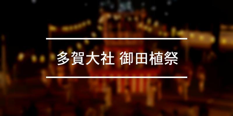多賀大社 御田植祭 2021年 [祭の日]