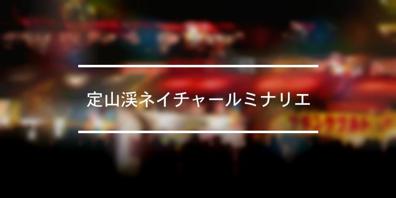 定山渓ネイチャールミナリエ 2020年 [祭の日]
