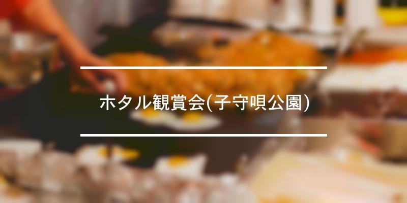 ホタル観賞会(子守唄公園) 2021年 [祭の日]