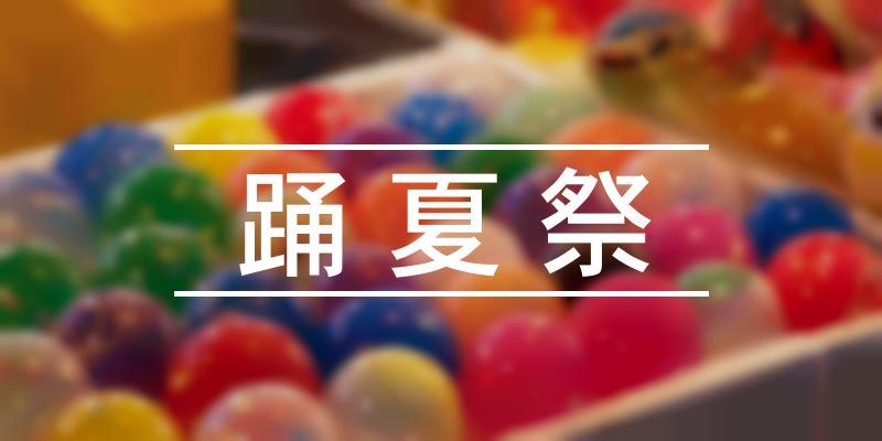 踊夏祭 2020年 [祭の日]