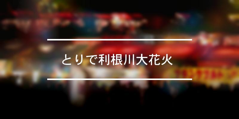 とりで利根川大花火   2021年 [祭の日]