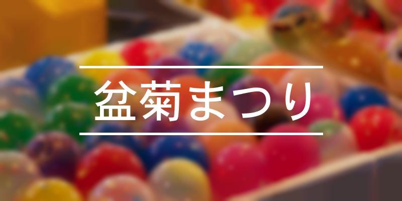 盆菊まつり 2021年 [祭の日]