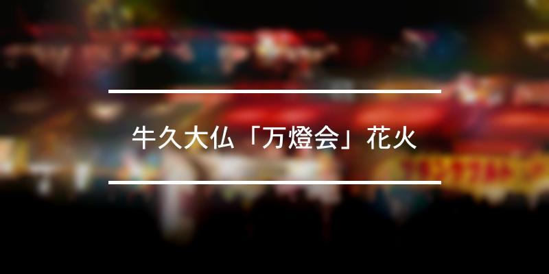 牛久大仏「万燈会」花火 2021年 [祭の日]