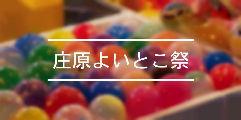 庄原よいとこ祭 2021年 [祭の日]