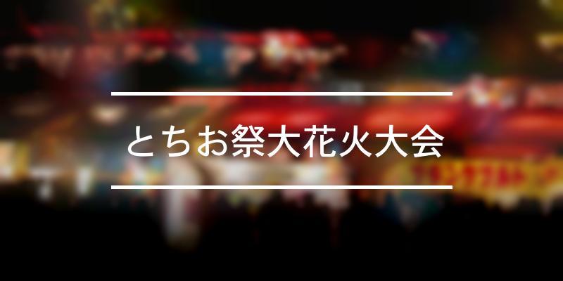 とちお祭大花火大会 2020年 [祭の日]