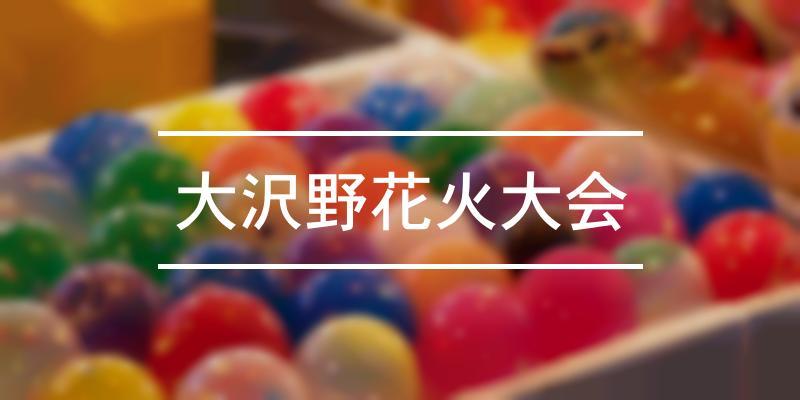 大沢野花火大会 2021年 [祭の日]
