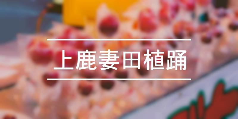上鹿妻田植踊 2020年 [祭の日]