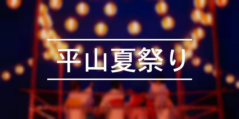 平山夏祭り 2021年 [祭の日]