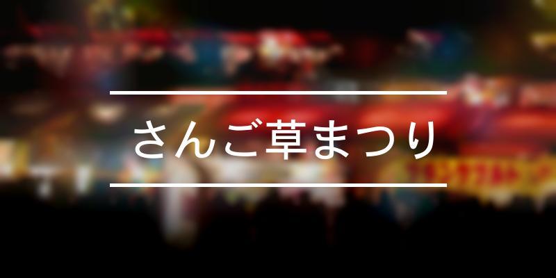 さんご草まつり 2021年 [祭の日]