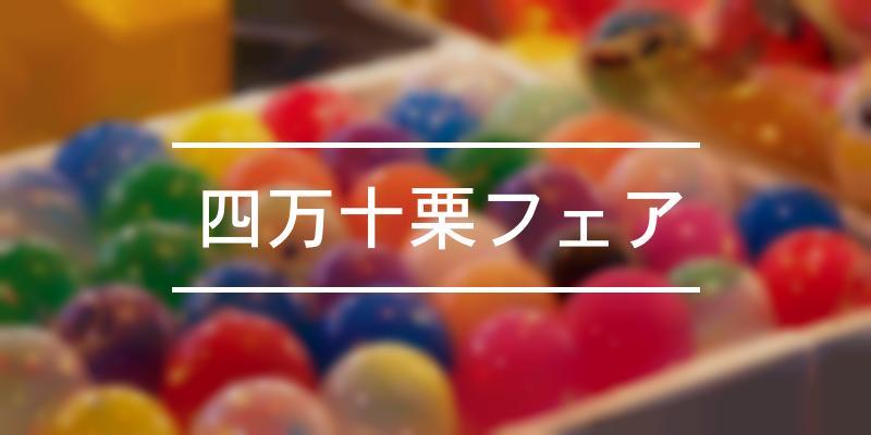 四万十栗フェア 2020年 [祭の日]