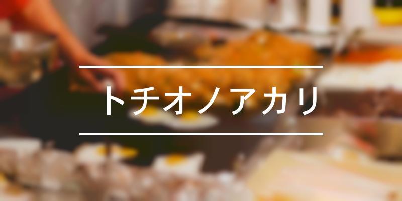 トチオノアカリ 2021年 [祭の日]